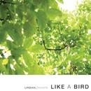 Like A Bird 앨범 대표이미지