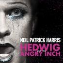 Sugar Daddy From '헤드윅 (Hedwig)' (2014 브로드웨이 오리지널 캐스트 레코딩) 대표이미지