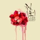Y.BIRD From Jellyfish With LYn X LEO 앨범 대표이미지