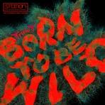 Born to be Wild (Feat. 박진영) 앨범 대표이미지