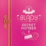 Secret Number (비밀열쇠) 앨범 대표이미지