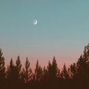 늦은 오후 기상, 좋은 낮잠을 위한 노래들 대표이미지