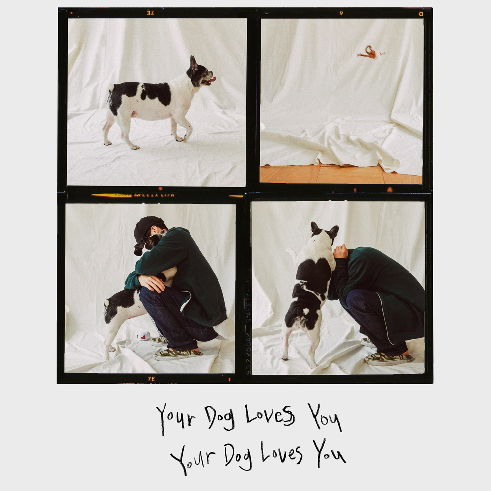 [情報] Colde - Your Dog Loves You (Feat. Crush)