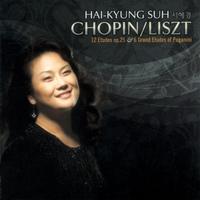 Chopin/Liszt - 12 Etudes Op.25 & 6 Grand Etudes Of Paganini
