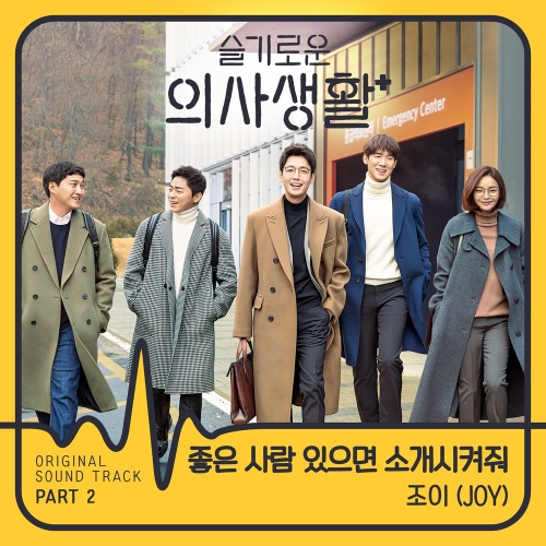 Joy (Red Velvet) - 좋은 사람 있으면 소개시켜줘 (Introduce me good person) (OST Hospital Playlist Part.2) Cover