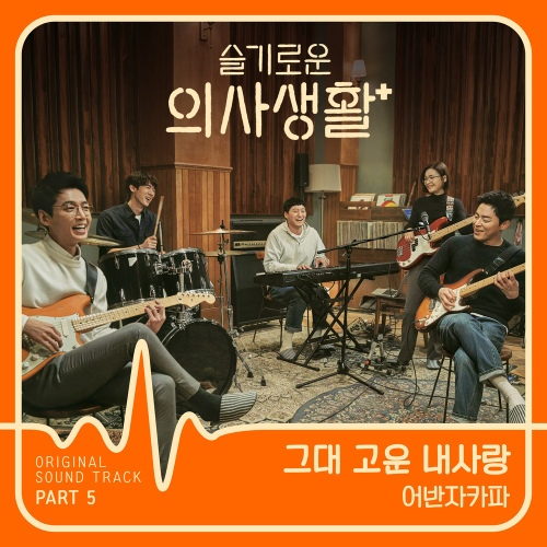 Urban Zakapa - 그대 고운 내사랑 (Beautiful My Love) (OST Hospital Playlist Part.5) Cover