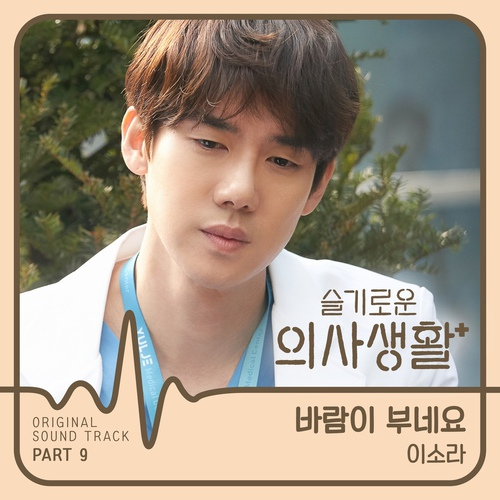 Lee Sora - 바람이 부네요 (The wind is blowing) (OST Hospital Playlist Part.9) Cover